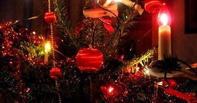 Palace Рождество