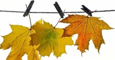Осеннее пребывание